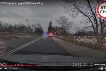 Uwaga wiewiórki za kierownicą. Policja spycha kierowców z drogi.